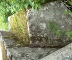 Zarasla nekropola Pavlovića u Gornjim Palama