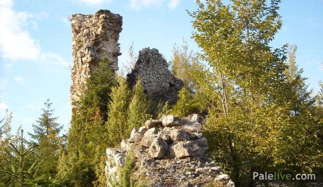 Ostaci Gradine Pavlovića u Gornjim Palama, u blizini vrela Paljanske Miljacke.