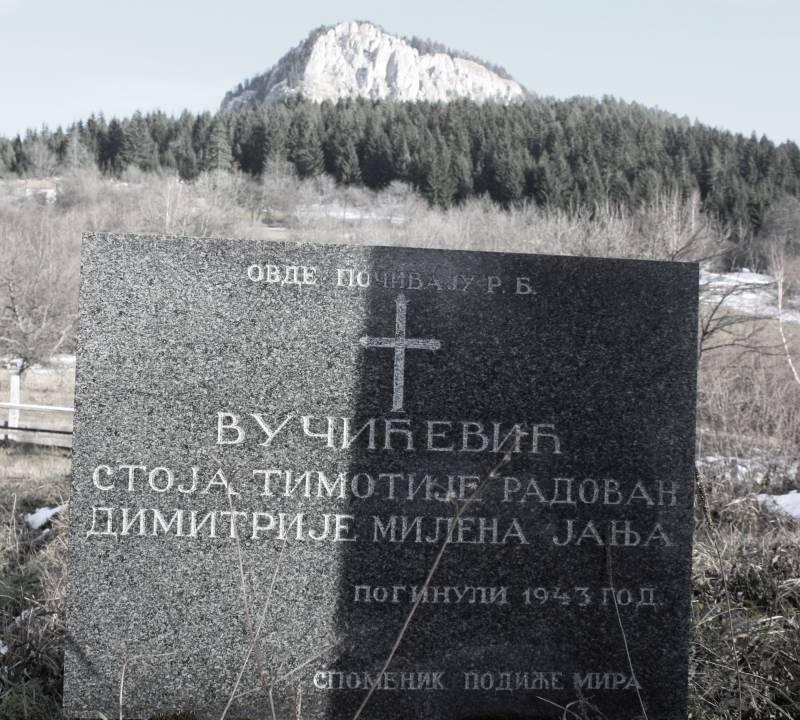 Spomenik stradalim Vučićevićima na groblju Visočnik