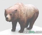 Pronađeni ostaci medvjeda stari 16.000 godina