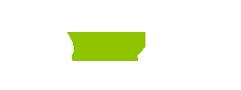 Palelive.com logo