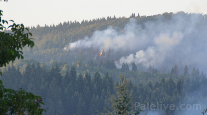 Požar - arhivska fotografija