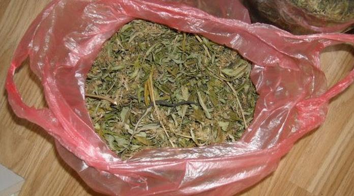 U Kozluku pronađeno više od deset kilograma indijske konoplje
