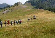 Zelengorska jezera, vrhovi i borovnice oduševljavaju turiste
