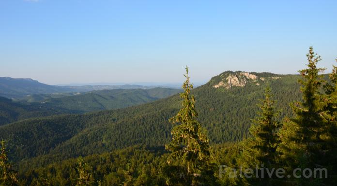 Pogled na Ođu i šume Republike Srpske