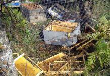 Mečka uništila devet košnica