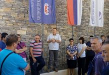 Direktor preduzeća Nedeljko Perišić