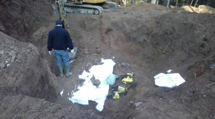 Pronađeni ostaci najmanje pet lica
