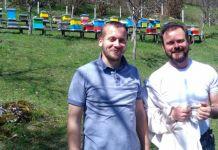 Vaskrs u košnici - pčela kao životni uzor