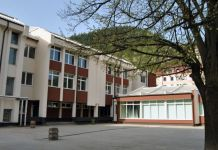 """Petrović: Nije dogovoreno izučavanje """"bosanskog jezika"""""""