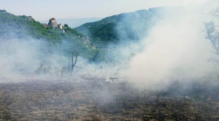 Požar na lokalitetu Mlađevac stavljen pod kontrolu